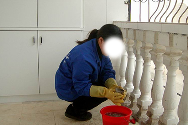 木质地板的清洁养护